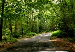 Back Road to Brimfield